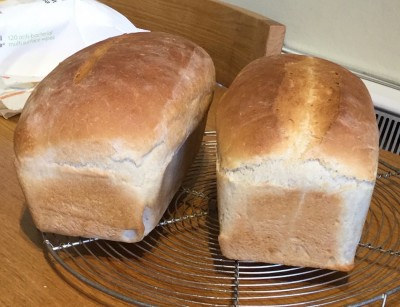 White loaves.jpg